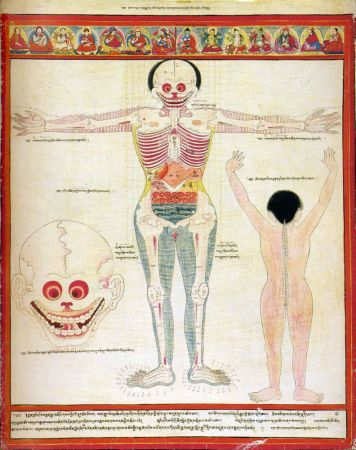 Атлас тибетской медицины. Лист 7