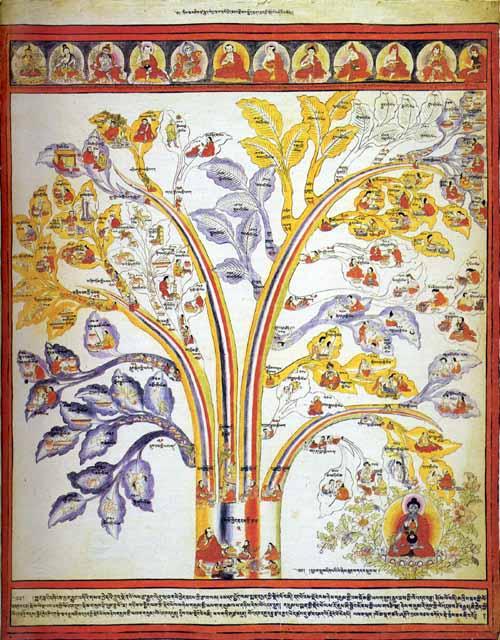 Медицины атлас тибетской медицины