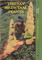 Тибетской медицины tibetan medicinal plants